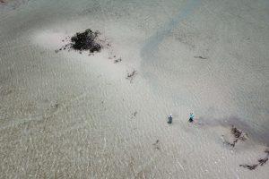 Flats of Chetumal Bay