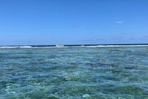 Snorkel in Xcalak Reef National Park